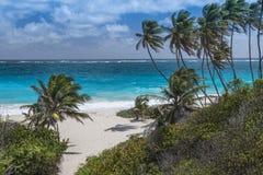 дно залива Барбадосских островов Стоковые Фото