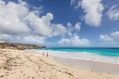 дно пляжа залива Барбадосских островов Стоковые Изображения RF