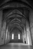 нутряной дворец папский Стоковая Фотография RF
