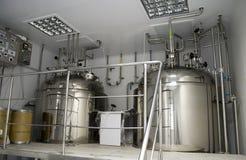 нутряной завод микстур Стоковая Фотография RF