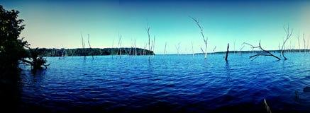 Нырните в синь Стоковое Фото