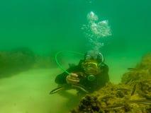 нырять в заливе houcima стоковое фото rf