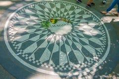 НЬЮ-ЙОРК, США - 22-ОЕ НОЯБРЯ 2016: Клубника Fields мозаика в поле Central Park в Нью-Йорке, США Стоковое Фото