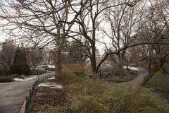 Нью-Йорк, США Central Park стоковая фотография rf