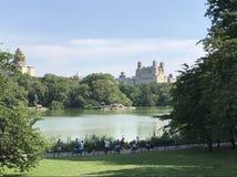 Нью-Йорк, Central Park Стоковое Фото