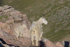 Няня козы горы и милый ребенк стоковое изображение rf