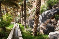 Оазис в середине пустыни Стоковое Изображение