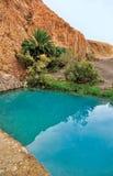 оазис горы chebika Стоковые Фотографии RF