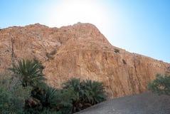 Оазис под горой Стоковое фото RF