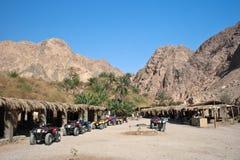 оазис пустыни Стоковые Фото