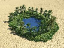 оазис пустыни Стоковое Изображение