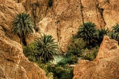 оазис Тунис moutain Стоковое Фото