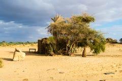 Оазис Bahariya Египет Стоковая Фотография RF