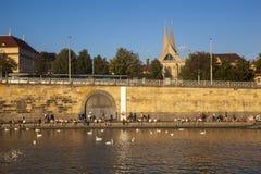 Обваловка реки Влтавы стоковые изображения rf