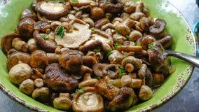 Обедающий салата гриба стоковые изображения rf