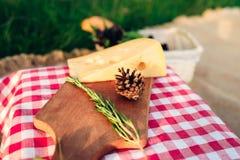 Обед пикника на красной checkered скатерти стоковые фотографии rf