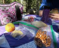 Обед пикника после пешего туризма в лесе стоковая фотография