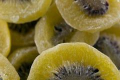 Обезвоженные кивиы био стоковое изображение