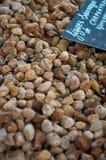 Обезвоженные одичалые смоквы Стоковое Изображение RF