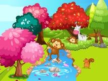 Обезьяна в джунглях Стоковое Изображение RF