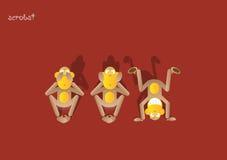 обезьяна 11-the 3-ее Стоковые Фотографии RF