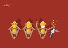 обезьяна 49-the 3-ее Стоковые Изображения