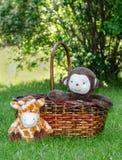 Обезьяна и жираф игрушки в корзине Стоковая Фотография RF