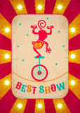 Обезьяна на велосипеде Стоковая Фотография RF