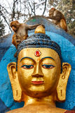 Обезьяна на виске Swayambunath, Катманду, Непал стоковое изображение rf