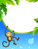 обезьяна рамки Стоковое Изображение