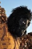 обезьяна человека Стоковая Фотография