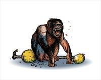 обезьяна screaming Стоковые Фотографии RF