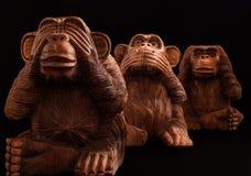 обезьяны 3 велемудрые Стоковые Изображения