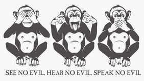обезьяны 3 велемудрые Стоковая Фотография RF