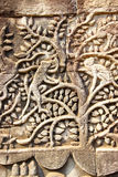 Обезьяны в вале Стоковая Фотография