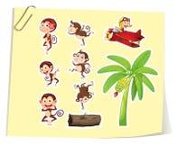 Обезьяны и банановое дерево Стоковое Изображение