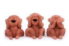 3 обезьяны Стоковое фото RF