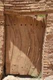 Обезьяны Gelada холя в гористых местностях Simien стоковая фотография