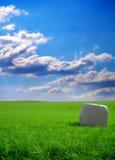 обернутое сено поля bale стоковое фото rf