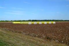 Обернутые желтым цветом связки хлопка Стоковое фото RF
