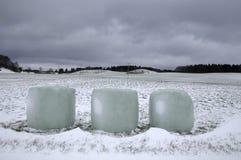 Обернутые bales сена в снежке Стоковая Фотография RF