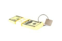 обеспеченность padlock долларов принципиальной схемы финансовохозяйственная Стоковое Изображение