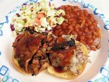 Обедающий барбекю цыпленка и свинины Стоковое Фото