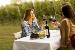 Обедающий в винограднике Стоковое фото RF