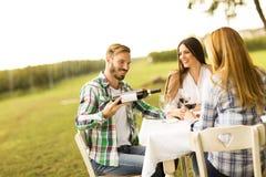 Обедающий в винограднике Стоковое Изображение RF