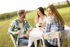 Обедающий в винограднике Стоковая Фотография RF