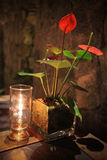 Обедающий свечки светлый Стоковое фото RF