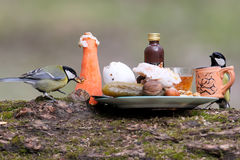 Обед готов Стоковая Фотография RF