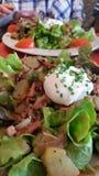 Обед салата стоковые фото
