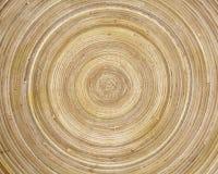 обжатый бамбук Стоковые Фотографии RF